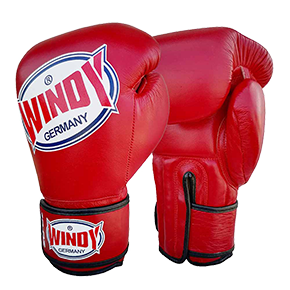 Jefferson Sports_Windy Boxhandschuhe